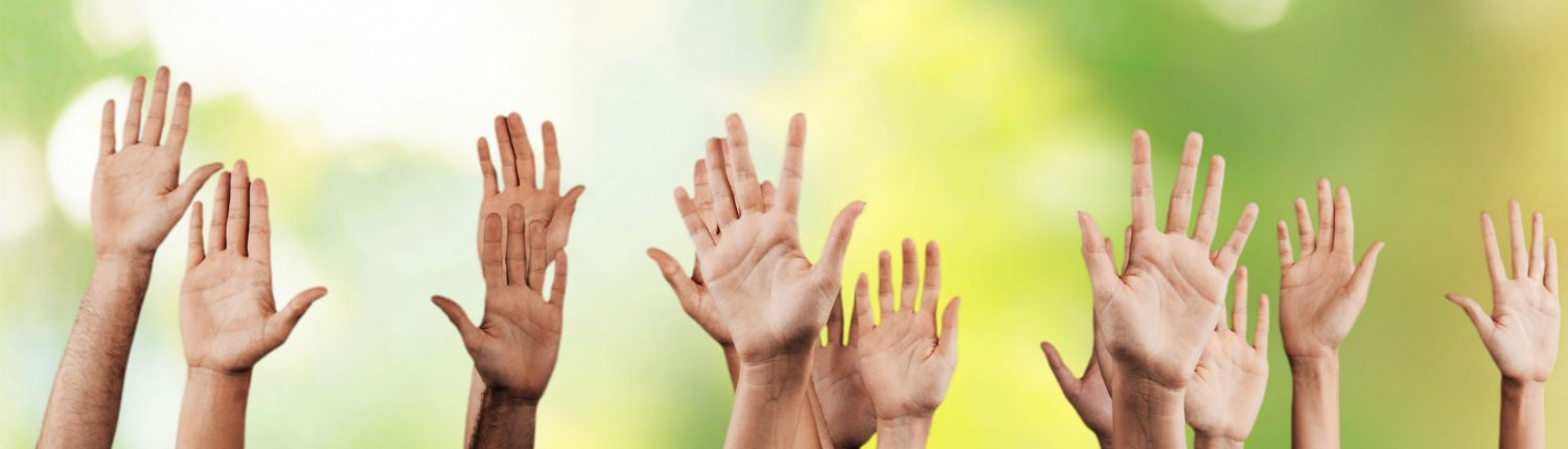 Volunteer Hands in the Air